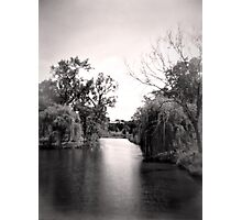 Black and White Park Photographic Print