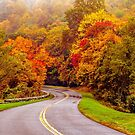 autumn morning on blue ridge parkway by Alexandr Grichenko