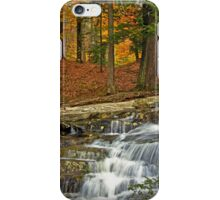 Waterfall of Gold iPhone Case/Skin