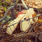 Autumn Pointe by Lita Medinger