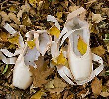 Pointes in Leaves by Lita Medinger
