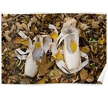 Pointes in Leaves Poster