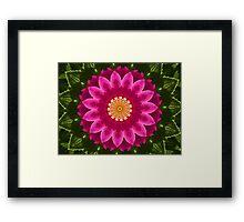 Beach Rose Kaleidoscope. Framed Print