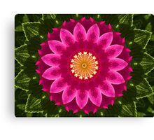 Beach Rose Kaleidoscope. Canvas Print
