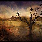 A Desert Dream by Barbara Manis