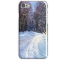 Connecticut Winter Road iPhone Case/Skin