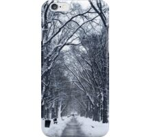 Winter Trees, Washington D.C.  iPhone Case/Skin