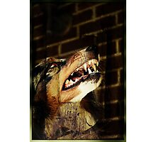 Werewolf Sam Photographic Print