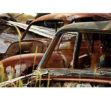 Rusty 2 Photographic Print