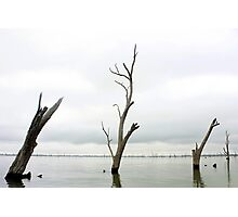 Flooded Land Photographic Print
