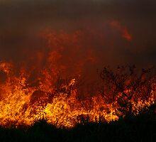 Fire in the dunes by UncaDeej