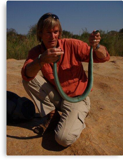 Austin Stevens with venomous tree snake by Austin Stevens