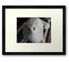 Whats up, Daddy? Framed Print
