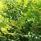 Green Zone by priyanjit