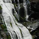 Tellico Falls by Terra 'Sunshine' Gilbert