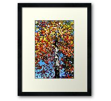 Tree of Colors Framed Print