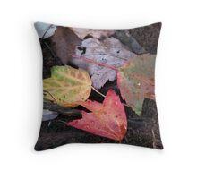 Autumn Color Convention Throw Pillow