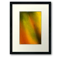 feeling texture and volume Framed Print