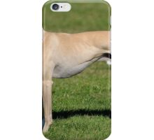 Tiny Whippet iPhone Case/Skin