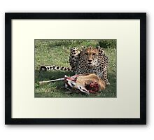 The Predator Framed Print