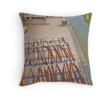 Drying cinnamon Throw Pillow