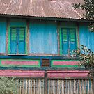 Minangkabau house by Naomi Brooks