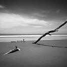 Bundaberg in Black and White by Luke Griffin
