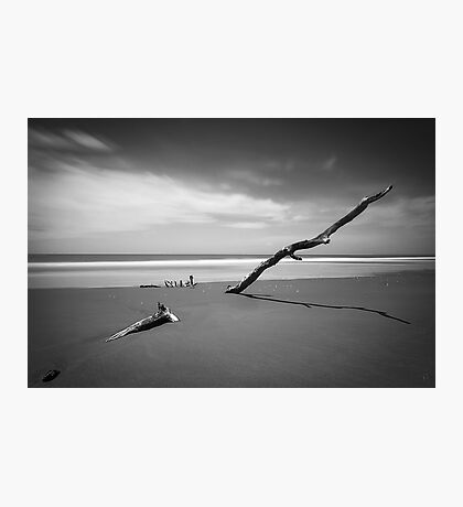 Rising Above the Rest Photographic Print