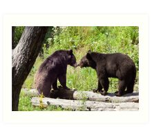 Bear enounter of the first kind Art Print