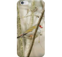 Red-browed Finch, Cleland Wildlife Park iPhone Case/Skin