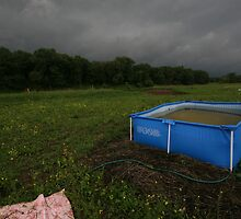 Swimming pool in the meadow. by fotorobs