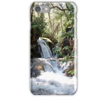 Stoney Creek iPhone Case/Skin