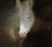 WHITE HORSE PORTRAIT by scarletjames