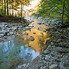 Mountain Stream 2 by gazmercer