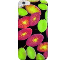 Lily Pads in Autumn iPhone Case/Skin