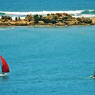 Australia Day, Torquay to Anglesea 01 by Andy Berry