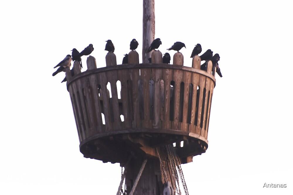Klaus Stoertebeker's ship mast by Antanas