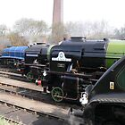Locomotive Lineup at Barrow Hill by Scott Read