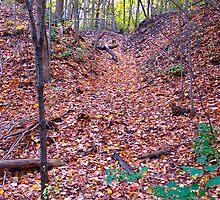 Leaf Avalanche by MarianBendeth