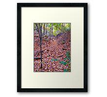 Leaf Avalanche Framed Print