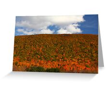 Looking East From Bristol Mountain, NY Greeting Card