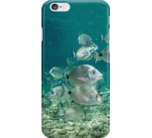 Fishes iphone cover  iPhone Case/Skin