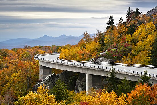 Linn Cove Viaduct - Blue Ridge Parkway Fall Foliage by Dave Allen
