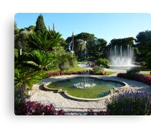 Water Features  Canvas Print