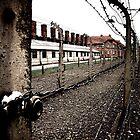 Fence at Auschwitz by Wintermute69