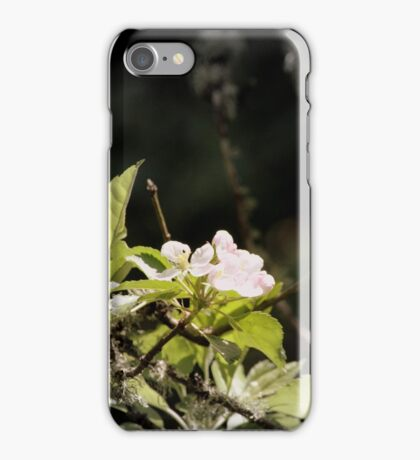 apple blossoms 9 iPhone Case/Skin