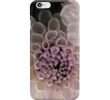 Dahlia in Pink (iPhone case) iPhone Case/Skin