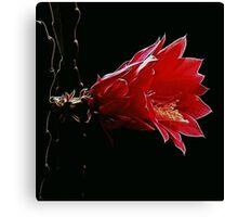 Wild Fractal Refractory Flower Canvas Print