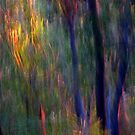 Abstract Faeries in the Forest by Michelle Wrighton
