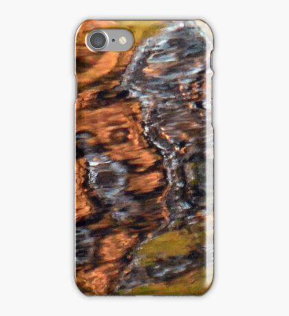 Mystery iPhone Case/Skin